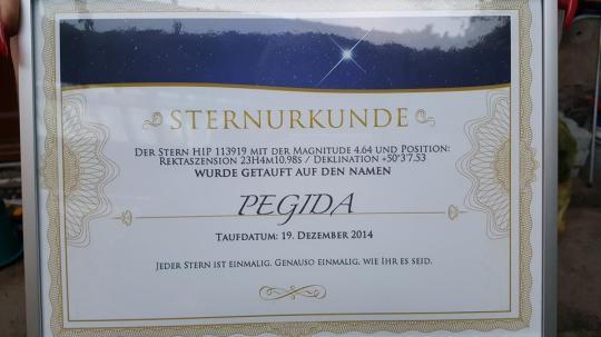 pegida-stern