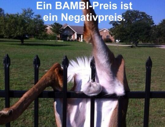 bambi-preis