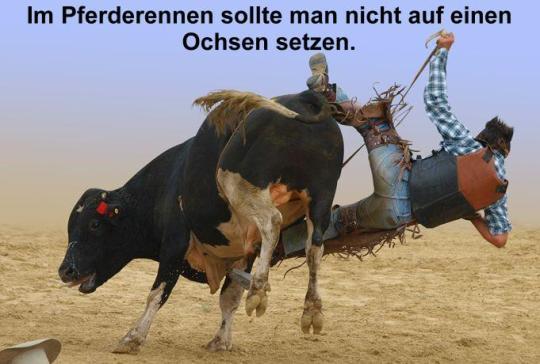 aufs_falsch_pferd